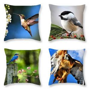 Introducing Throw Pillows